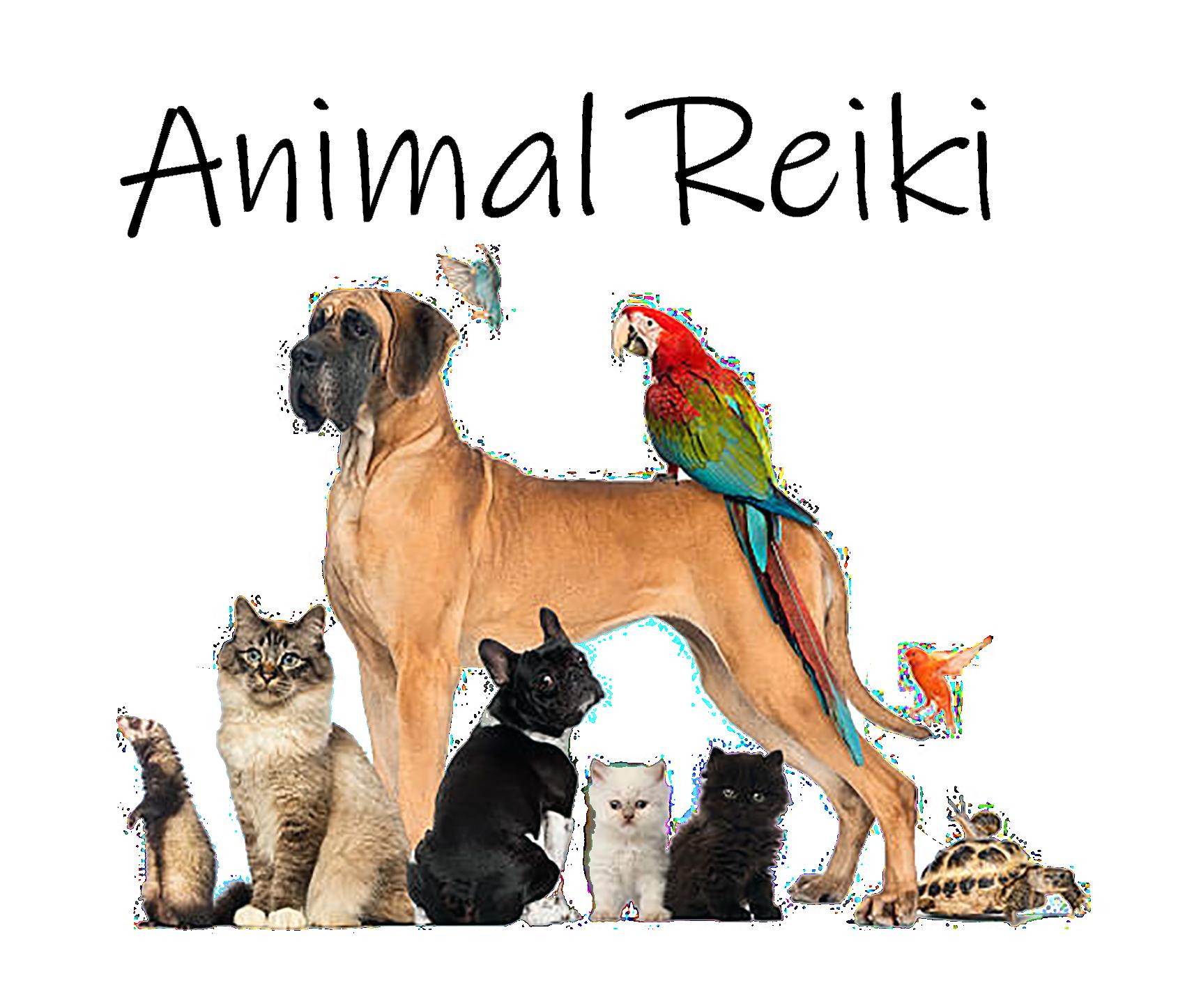 group of animals reiki